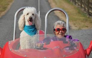 Cụ bà 91 tuổi từ chối điều trị ung thư để dành thời gian cuối đời làm điều không ai ngờ