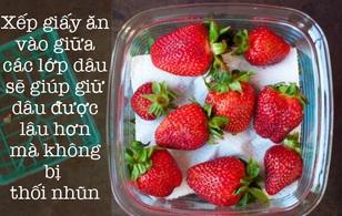 8 mẹo vặt giúp giữ rau củ quả tươi lâu mà ai cũng phải biết