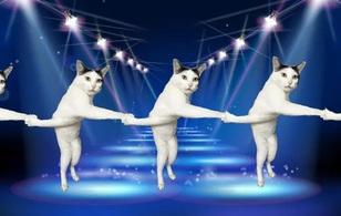 """Bộ ảnh cười rơi mồm của các thánh photoshop dành tặng chú mèo có dáng đứng """"xoắn quẩy"""""""