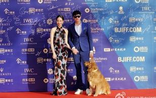 Hà Nhuận Đông cùng Trương Quân Ninh dắt chó đi... sự kiện