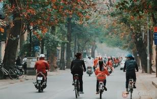 Đẹp như lá bàng đỏ giữa trời đông Hà Nội