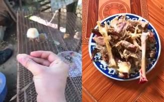Clip: Thanh niên rảnh rỗi kể chuyện cuộc đời một chú gà chỉ trong 11 giây