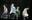Bán vé cả những chỗ ngồi không nhìn được... sân khấu trong tour của Big Bang, YG đang quá tham lam?