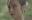 """Khán giả lại náo loạn sau khi """"Glee Việt"""" phát sóng tập đầu tiên"""