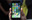 Vì sao màn hình iPhone đời cũ nhìn sướng mắt hơn smartphone bây giờ?