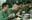 Sao nhập ngũ: Hết khen cơm quân đội ngon, Hoàng Tôn còn đàn hát vui vẻ trong quân ngũ