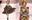 """4 nữ thần Địch Lệ Nhiệt Ba, Jessica Jung, Mai Davika, Ayaka Miyoshi catwalk """"làm náo loạn"""" sàn diễn của Dolce&Gabbana"""