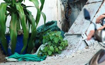 TP. HCM: Xác chó trong bao tải bốc mùi, cả khu phố tá hỏa vì tưởng có án mạng