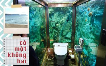 Lạ đời thay quán cafe nọ ở Nhật Bản: Khách hàng quên ăn quên uống vì chăm chăm... ngắm nhà vệ sinh