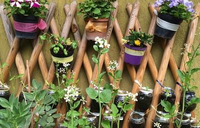 14 ý tưởng đem cây xanh vào nhà không thể cuốn hút hơn