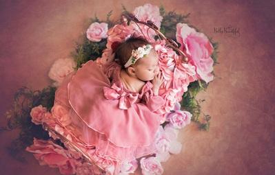 Bộ ảnh đẹp lung linh của các bé sơ sinh vào vai công chúa Disney