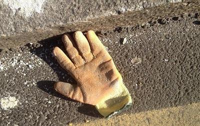 Nhiếp ảnh gia nghiệp dư chỉ thích chụp ảnh găng tay vứt đi
