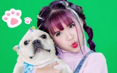 """Khởi My thích thú khi tìm được """"phiên bản mini"""" của chó cưng Choin"""