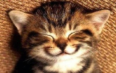 7 thói quen giúp bạn luôn hạnh phúc đã được khoa học chứng minh