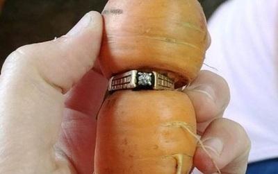 Đánh rơi chiếc nhẫn đính hôn bằng kim cương, 13 năm sau điều kì diệu đã đến với cụ bà ngoại bát tuần