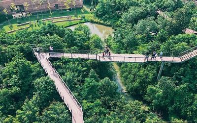 """Đến Bangkok, đừng quên ghé khu rừng """"thần tiên"""" được xây từ... bãi rác của người Thái"""