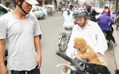 Đáng yêu thế cơ chứ, sĩ tử đi thi, cả nhà mang cún cưng đi theo cổ vũ!
