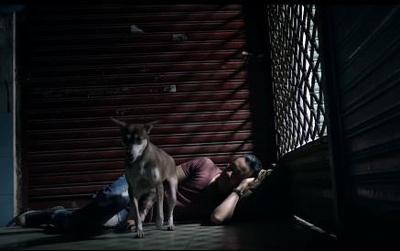 Trailer mới của Hot Boy nổi loạn 2 – Nhân vật gây cảm tình nhất ngoài Lam chắc chắn là chú chó!