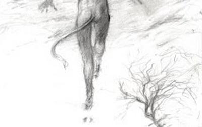 """Câu chuyện bí ẩn về những """"dấu chân ác quỷ"""" thách thức giới khoa học"""