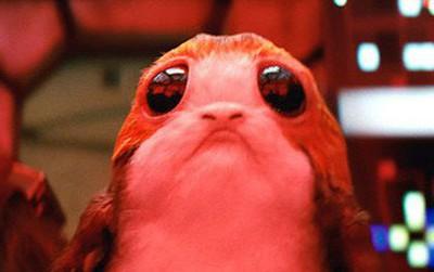 """Lo mà giữ chặt ví tiền, vì linh vật đáng yêu lạc lối Porgs của """"Star Wars: The Last Jedi"""" sẽ đốn tim bạn!"""