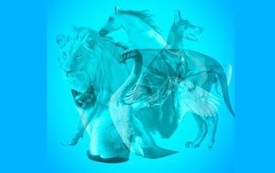 Con vật nhìn thấy trong bức tranh ảo giác giải mã tâm lý của bạn trong những ngày đầu năm Mậu Tuất