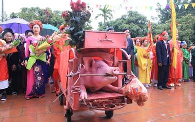 """Hàng nghìn người dân kéo đến xem lễ chém lợn ở Ném Thuợng, hai """"ông ỉn"""" bắt đầu được đưa ra sân đình"""
