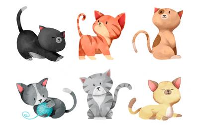 Bạn thích boss mèo nào nhất, điều đó sẽ tiết lộ toàn bộ tính cách của bạn