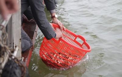 Hơn 10.000 người tham gia đại lễ phóng sinh 5 tấn cá tại Hà Nội