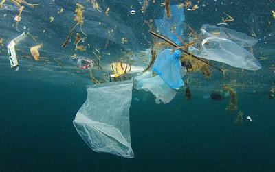 Chuyên gia cảnh báo: Rác nhựa trên đại dương sẽ tăng GẤP 3 LẦN trong 10 năm tới
