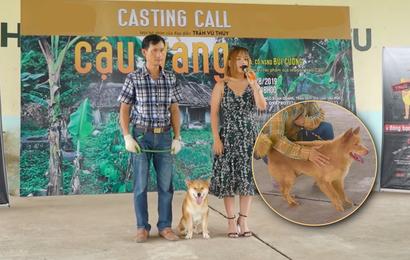 """Chê cún thuần Việt """"thiên tính tự nhiên cao"""", NSX """"Cậu Vàng"""" lại bỏ qua chú chó Bắc Hà đáng yêu này?"""