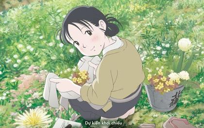 """5 lưu ý trước khi xem anime hay nhất năm 2016 """"In This Corner Of The World"""""""