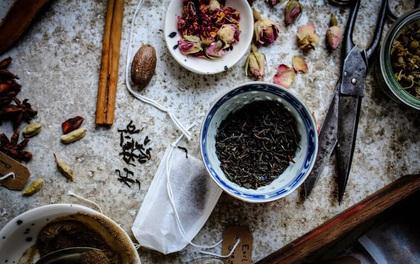 Lợi ích tuyệt vời của trà đen sẽ khiến bạn vô cùng bất ngờ