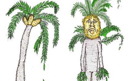 Đây đích thị là loài cây FA nhất Trái đất bởi dù muốn cũng không thể tìm được bạn đời