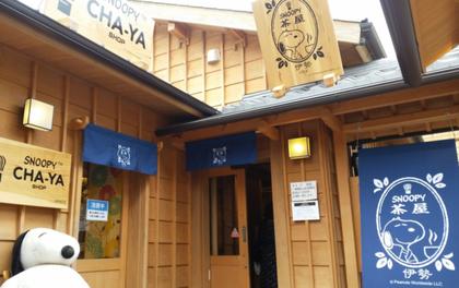 Thăm trà quán Snoopy mới được khai trương tại xứ hoa anh đào