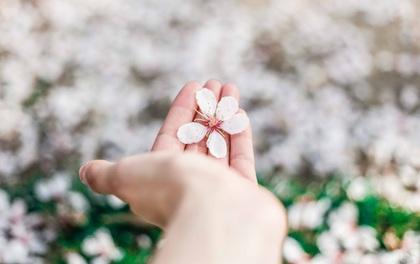 5 dấu hiệu chuẩn không cần chỉnh chỉ ra rằng bạn đang mắc kẹt trong một mối quan hệ với sai người