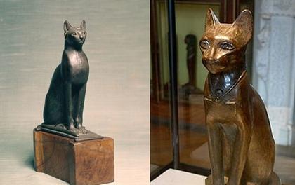 Có một nơi mà người ta tôn thờ mèo như thần, ai giết mèo sẽ bị xử tử hình