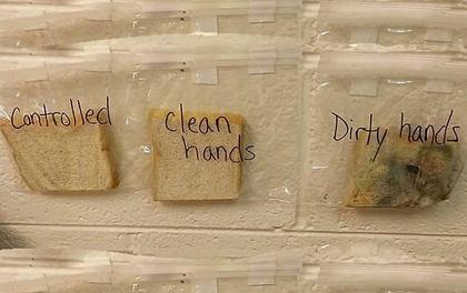 Chỉ 1 thí nghiệm cực đơn giản, giáo viên khiến học sinh của mình không bao giờ dám quên rửa tay nữa