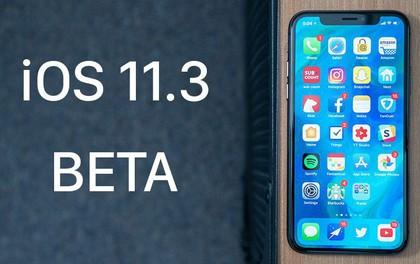 Đây là cách cập nhật iOS 11.3 ngay từ hôm nay để không phải lo Apple làm chậm iPhone của bạn nữa