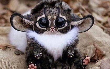 Đây đã có thể là chú khỉ dễ thương và độc nhất thế giới nếu như...