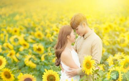 Jun Phạm và Khả Ngân tìm nhau giữa cánh đồng hướng dương đẹp như phim Nhật