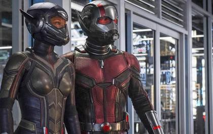"""Nàng Ong chàng Kiến """"Ant-Man and the Wasp"""" tiếp tục bành trướng thế lực ở phòng vé Hàn"""