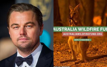 """""""Thor"""" Chris Hemsworth đã khủng, tài tử """"Titanic"""" Leonardo còn khủng hơn: Lập quỹ cứu trợ đại thảm hoạ cháy rừng Úc với số tiền không tưởng"""