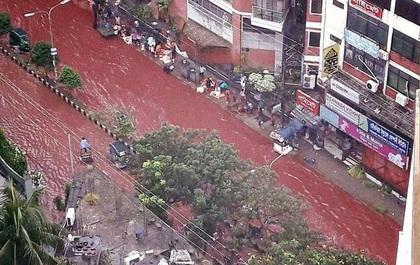 Đường phố nhuộm màu đỏ máu trong lễ hiến sinh của người Hồi giáo khiến ai cũng phải rùng mình