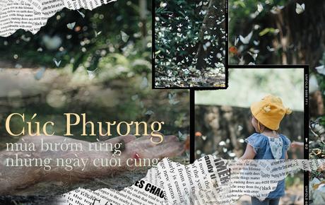 Chuyến đi Cúc Phương những ngày cuối mùa bướm rừng: Chốn thần tiên có vẻ đẹp riêng của sự muộn màng