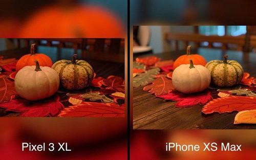 So sánh ảnh chụp của iPhone Xs Max và Pixel 3 XL: Đâu là ông vua camera?