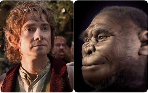 """Thêm bằng chứng chỉ ra thủ phạm đã hủy diệt tộc """"Hobbit"""" huyền thoại chính là con người hiện đại"""