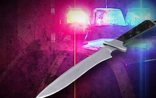 Mỹ: Bắt giữ 2 nữ sinh 12 tuổi lập mưu giết 15 bạn học rồi uống máu