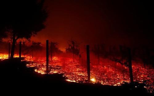 Toàn cảnh vụ cháy rừng thảm khốc nhất lịch sử California: Rất nhiều gia đình đã mất đi tổ ấm