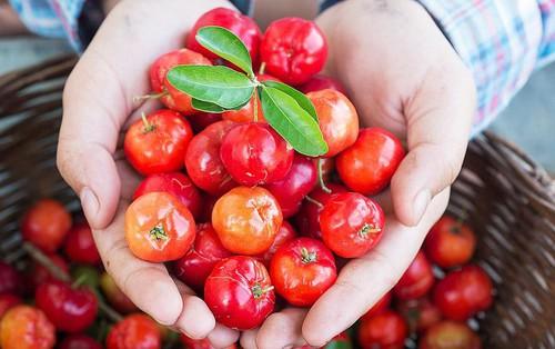 Ở Việt Nam có 1 loại quả rất rẻ được phương Tây xem là