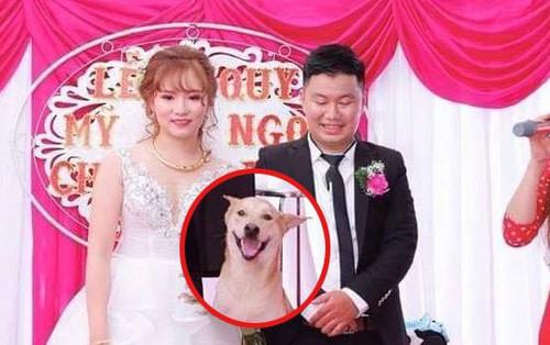 Cô dâu và chủ rể bị chiếm mất spotlight trong đám cưới vì một nhân vật không ai ngờ tới!